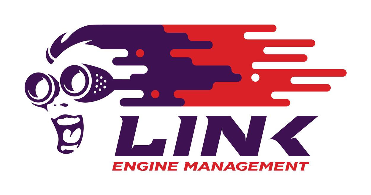 LINK ECU ENGINE MANAGEMENT LINK DEALER ESSEX LONDON
